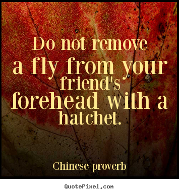 Do not remove a fly from your friend's forehead with.. Chinese Proverb top friendship quotes