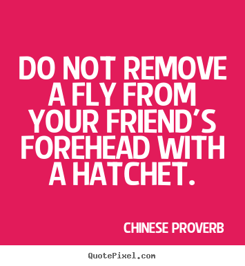 Do not remove a fly from your friend's forehead with.. Chinese Proverb best friendship quote