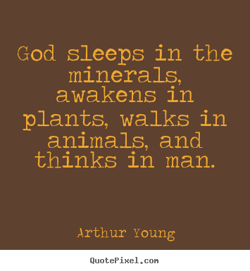 Inspirational quotes - God sleeps in the minerals, awakens in plants, walks..