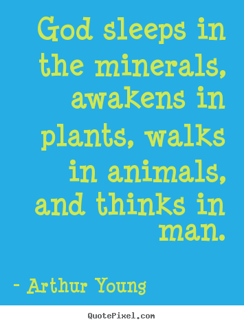 Inspirational quote - God sleeps in the minerals, awakens in plants, walks in animals,..