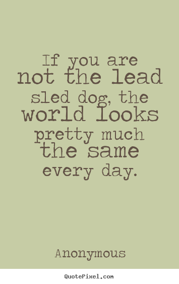 Quotes about life - If you are not the lead sled dog, the world looks pretty..